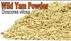 Wild Yam Powder